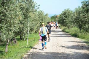 Foto Chianti Classico Marathon